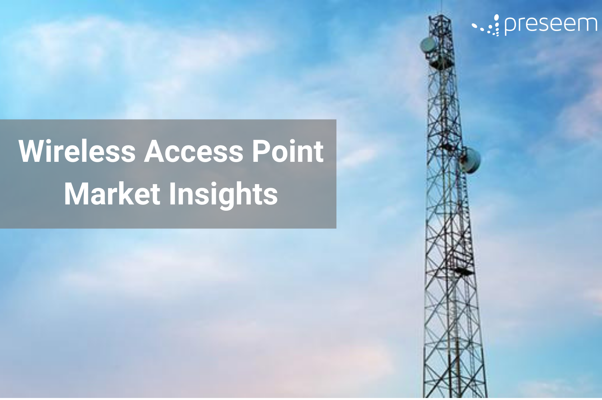 Wireless Access Point Market Preseem